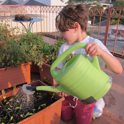 Watering can in vegetable garden.